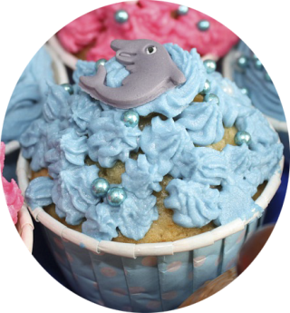 http://belbroughtontennis.co.uk/wordpress/wp-content/uploads/2016/01/cupcake-320x345.png